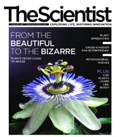 The Scientist February 2017 مجله دانشمند